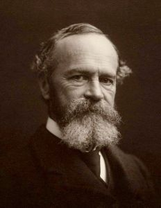 William James. Photograph by Notman Studios. MS Am 1092 (1185), Houghton Library, Harvard University.